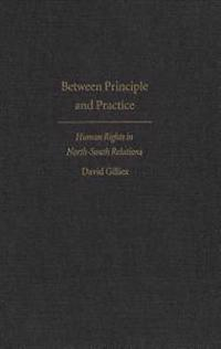 Between Principle and Practice