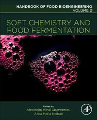 Soft Chemistry and Food Fermentation
