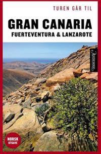 Turen går til Gran Canaria, Fuerteventura og Lanzarote - Ole Loumann pdf epub