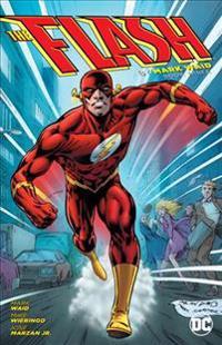 The Flash by Mark Waid 3