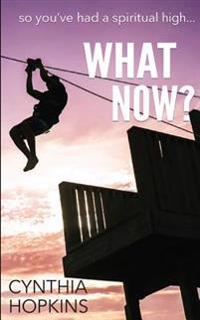 What Now?: So You Had a Spiritual High...