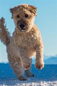 Charming White Wheaten Scottish Terrier in the Snow Dog Journal: 150 Page Lined Notebook/Diary
