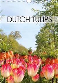 Dutch Tulips 2018