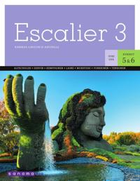 Escalier 3 (OPS16)