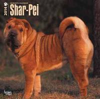 Shar-Pei 18-Month 2014 Calendar