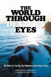 The World Through Dexter's Eyes