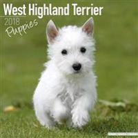 West Highland White Terrier Puppies Calendar 2018