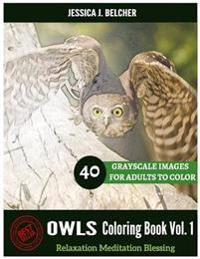 Owls Coloring Book for Adults Relaxation Vol.1 Meditation Blessing 40 Drawing: Sketches Coloring Book