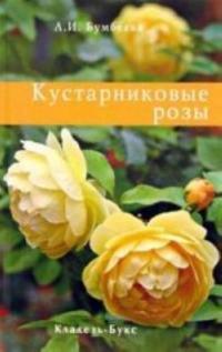 Kustarnikovye rozy