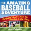 Amazing Baseball Adventure