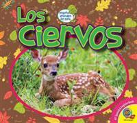 Los Ciervos (Deer)