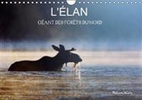 L'Elan - Geant Des Forets Du Nord 2018