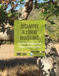 Sycamore Alluvial Woodland: Habitat Mapping and Regeneration Study