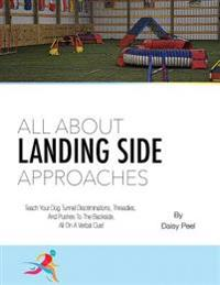 All about Landing Side Approaches