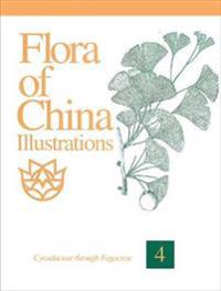 Flora of China Illustrations, Volume 4: Cycadaceae Through Fagaceae