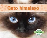 Gato Himalayo (Himalayan Cats) (Spanish Version)