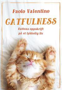 Catfulness; kattens oppskrift på et lykkelig liv