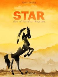 Star - den afrikanska hingsten