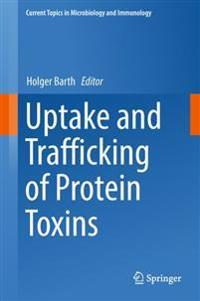 Uptake and Trafficking of Protein Toxins