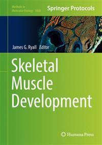 Skeletal Muscle Development