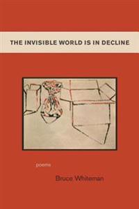 The Invisible World Is In Decline