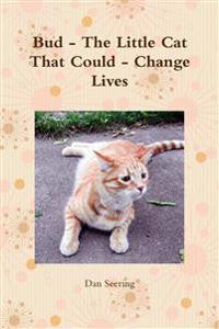Bud - The Little Cat That Could - Change Lives
