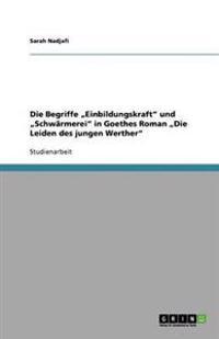 """Die Begriffe """"Einbildungskraft Und """"Schwarmerei in Goethes Roman """"Die Leiden Des Jungen Werther"""