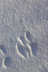 Winter Theme Journal Snow Footprints: (Notebook, Diary, Blank Book)
