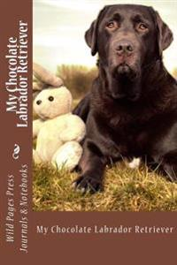 My Chocolate Labrador Retriever (Journal / Notebook)