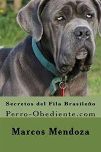 Secretos del Fila Brasileno: Perro-Obediente.com
