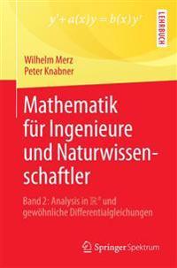 Mathematik Fur Ingenieure Und Naturwissenschaftler