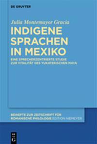 Indigene Sprachen in Mexiko: Eine Sprecherzentrierte Studie Zur Vitalitt Des Yukatekischen Maya