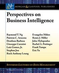 Perspectives on Business Intelligence