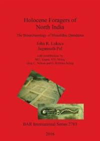 Holocene Foragers of North India: The Bioarchaeology of Mesolithic Damdama