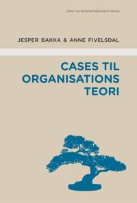 Cases til organisationsteori
