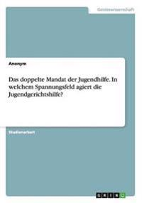Das Doppelte Mandat Der Jugendhilfe. in Welchem Spannungsfeld Agiert Die Jugendgerichtshilfe?
