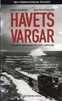 Havets vargar : dramatiska ubåtsepisoder från andra världskriget