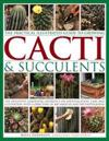 The Practical Illustrated Guide to Growing Cacti & Succulents
