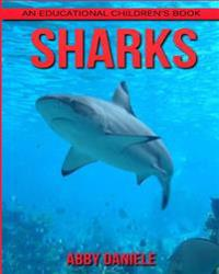Sharks! an Educational Children's Book about Sharks with Fun Facts & Photos