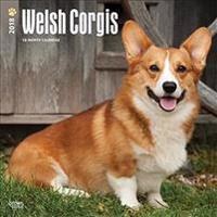 2018 Welsh Corgis Wall Calendar