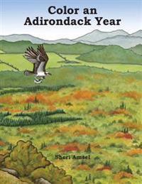 Color an Adirondack Year