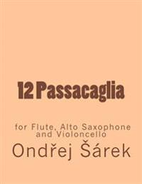 12 Passacaglia for Flute, Alto Saxophone and Violoncello