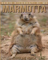 Marmotta: Libro Sui Marmotta Per Bambini Con Foto Stupende & Storie Divertenti