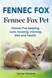 Fennec Fox. Fennec Fox Pet. Fennec Fox Keeping, Care, Housing, Training, Diet and Health.