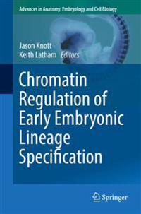 Chromatin Regulation of Early Embryonic Lineage Specification