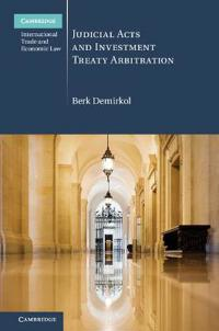 Judicial Acts and Investment Treaty Arbitration