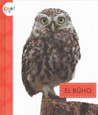 El Buho (Owls)