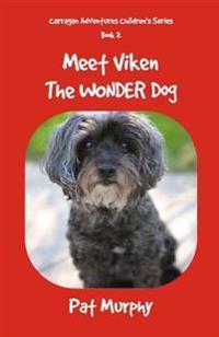 Meet Viken-The Wonder Dog