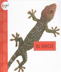 El Geco (Geckos)