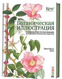 Botanicheskaja illjustratsija.Rukovodstvo po risov.ot Korolevskikh botanich.sadov Kju